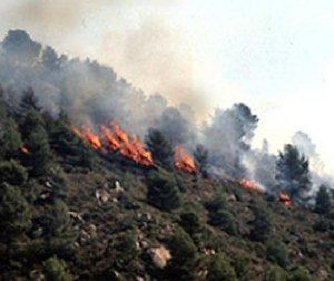 Incendi. Allerta arancione nella giornata di mercoledì 25 luglio. Continuano senza sosta gli interventi dei mezzi antincendio in tutta l'Isola