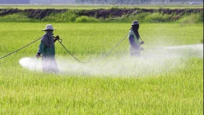 sequestrate 11 tonnellate di fertilizzanti pericolosi